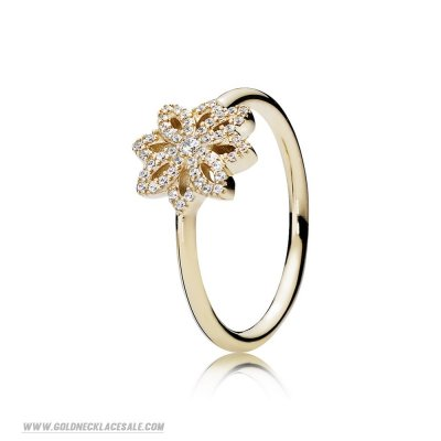 Jewelry Promo Pandora Rings Lace Botanique Ring Clear Cz 14K Gold