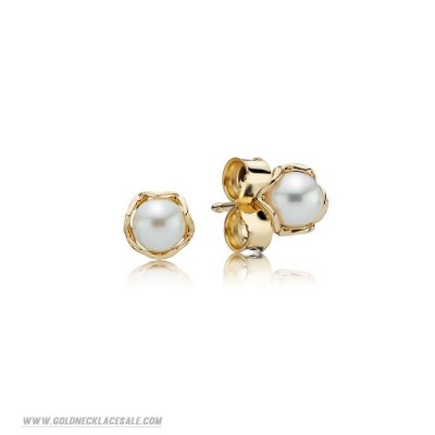 Jewelry Promo Pandora Collections Cultured Elegance Stud Earrings Pearl 14K Gold